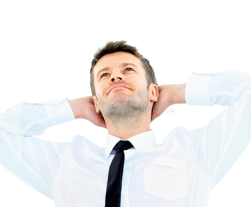 Download Portrait Of Handsome Business Man Stock Image - Image: 29755993