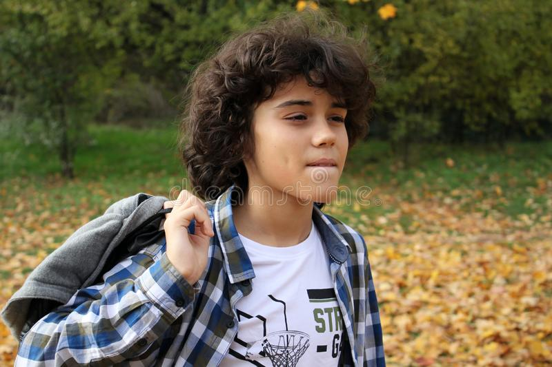 Portrait of a handsome curly boy royalty free stock image