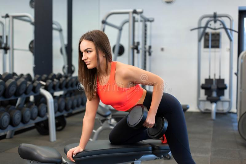 Portrait handsome fit woman lifting dumbbells on bench at gym.  stock image