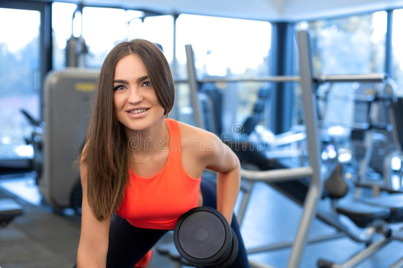Portrait handsome fit woman lifting dumbbells on bench at gym stock photography