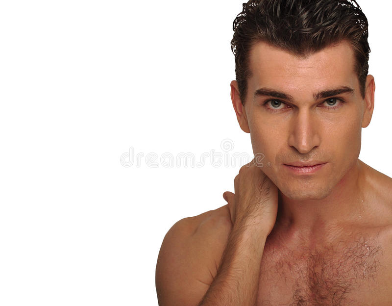 Portrait of a handsome man. royalty free stock images