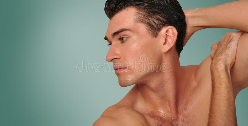 Portrait of a handsome man. royalty free stock image