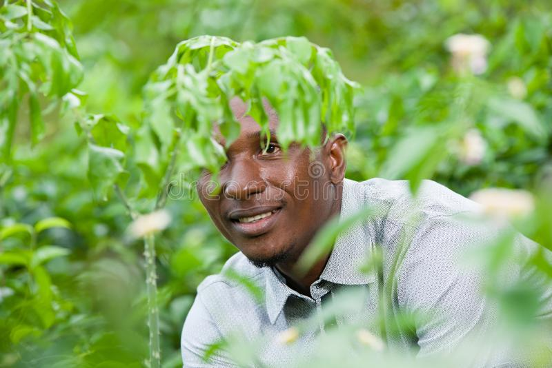 Portrait of handsome man posing in nature. Close up of young man sitting alone behind a bush, breathe the natural area and contemplate the forest stock images