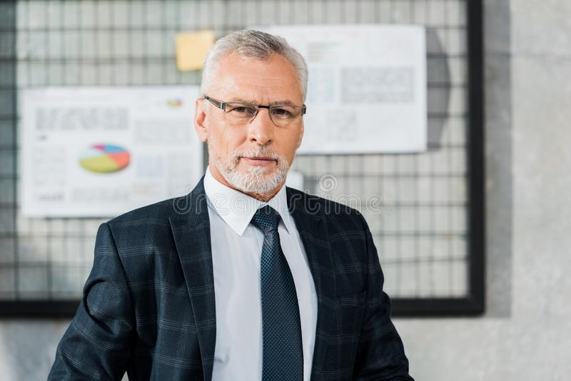 portrait of handsome mature businessman in suit and eyeglasses looking at camera royalty free stock photos