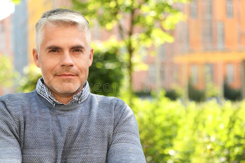 Portrait of handsome mature man in park stock image