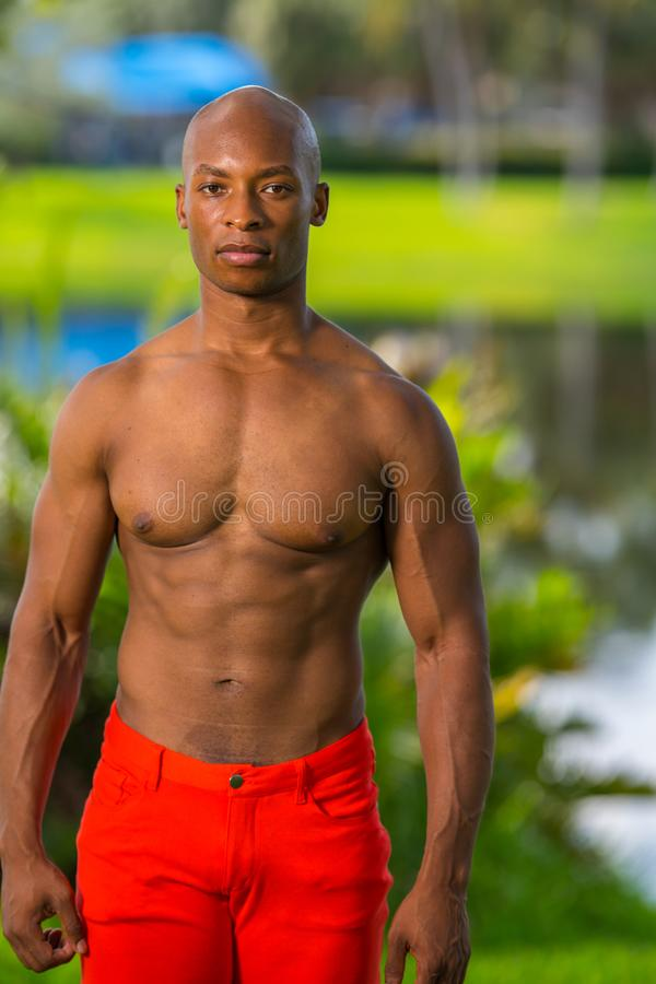 Portrait of a handsome shirtless fitness model posing in the park stock photography