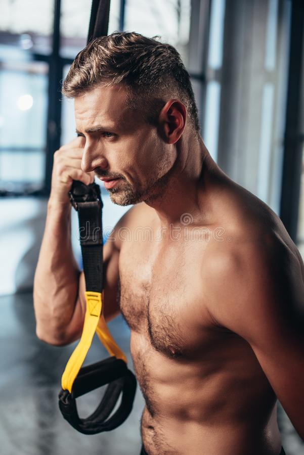 portrait of handsome shirtless sportsman holding resistance bands royalty free stock photos