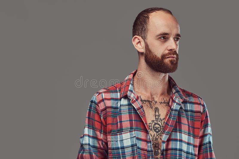Portrait of a handsome tattooed stylish hipster with a well-trimmed beard in a flannel shirt, posing in a studio. royalty free stock photography