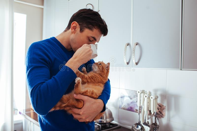 Portrait of handsome young man holding cat and drinking tea on the kitchen. Portrait of handsome young man holding cat on the kitchen royalty free stock photo