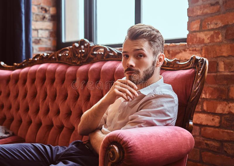 Portrait of a handsome young man with a stylish beard and hair elegantly dressed sitting on a red vintage sofa royalty free stock photo