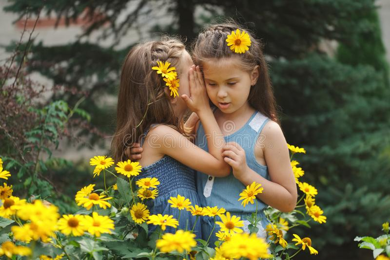 Portrait of happy beautiful girls in flowerbed royalty free stock photography