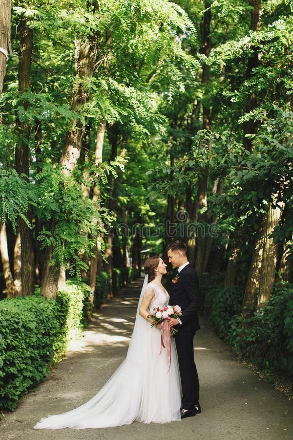 Portrait of happy bride and groom in beautiful landscape of green trees in park, forest, outdoor looking each other stock images