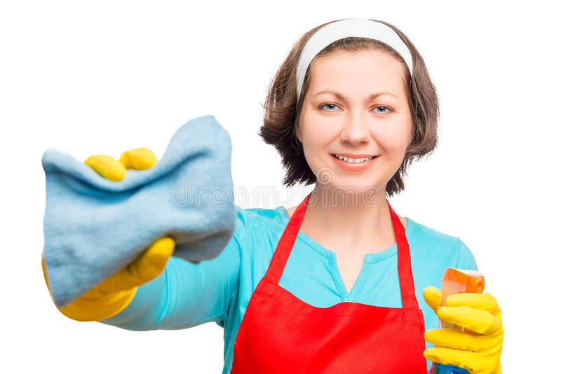 Portrait of happy brunette housewife with rag and spray stock image