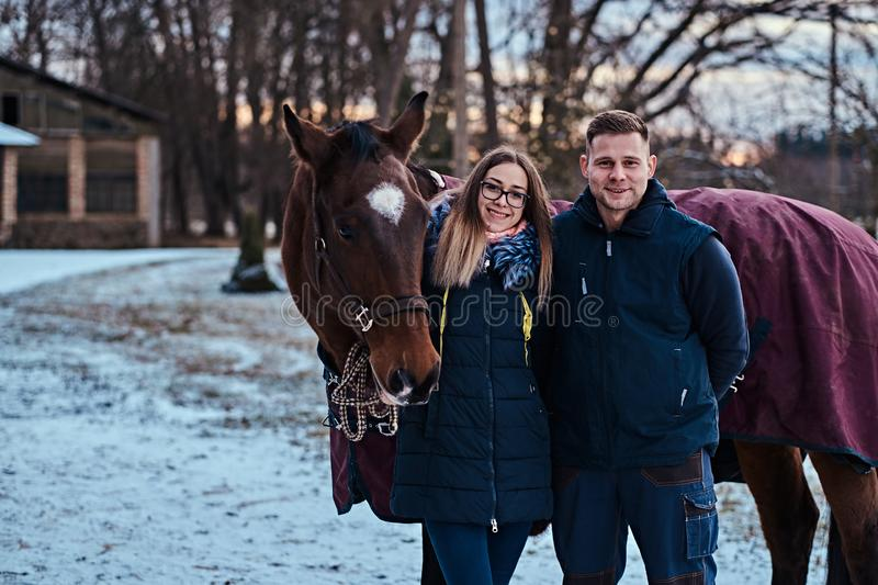 Portrait of a happy couple near to a brown horse on the ranch on a winter day. stock images