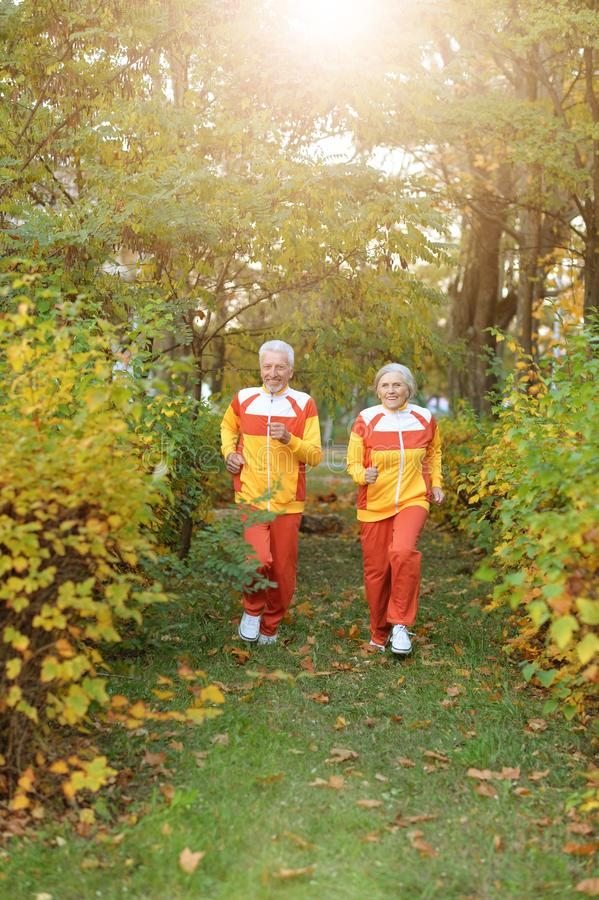 Portrait of happy fit senior couple jogging. Happy fit senior couple jogging in autumn park stock image