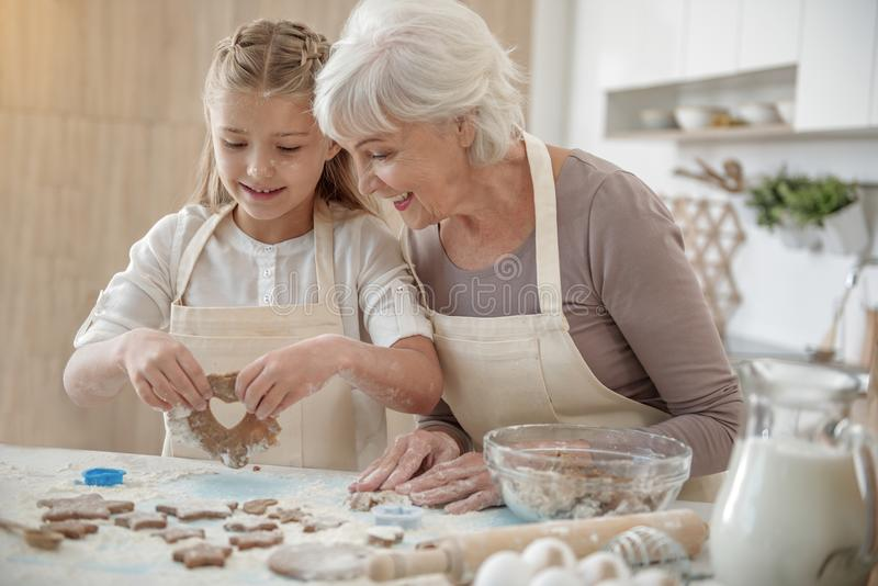 Cheerful grandchild making cookies with granny stock image