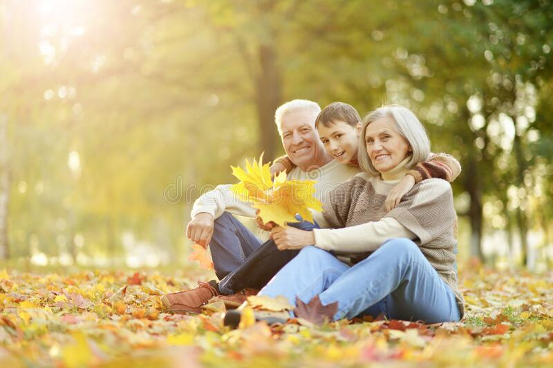 Portrait of happy grandfather, grandmother and grandson royalty free stock image