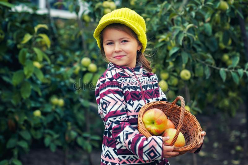 Little girl with fresh apples on the plot royalty free stock image