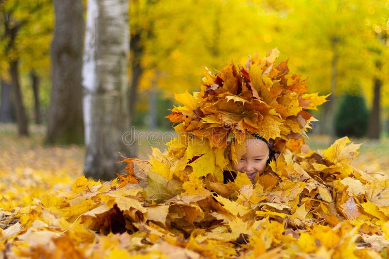 Happy little girl plays with autumn leaves in the park royalty free stock photography