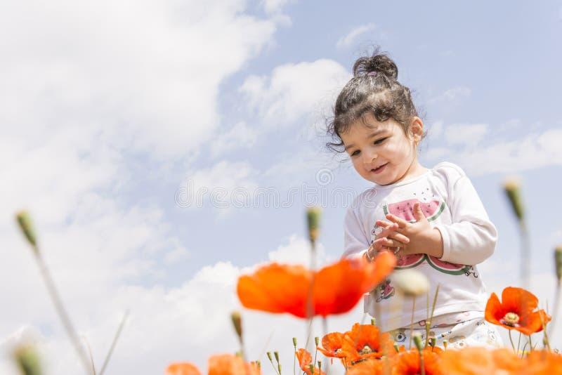Portrait of a happy little girl on poppy flowers field in front of sky stock image