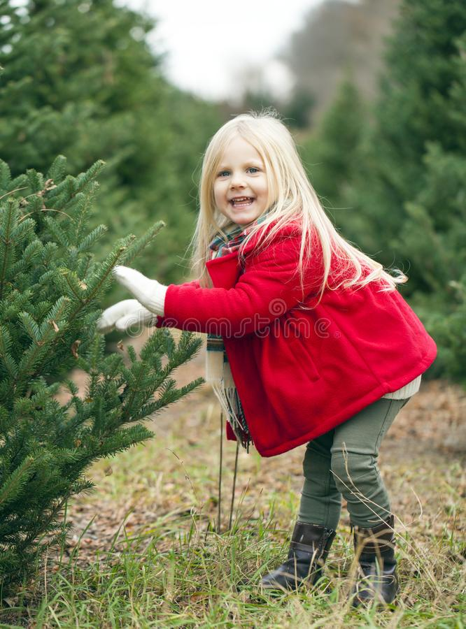 Portrait of happy little girl touching fir branches royalty free stock photo