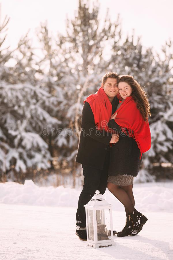 Portrait happy loving couple outdoors hugging and kissing, standing in winter forest park. Love in Valentine`s Day royalty free stock images