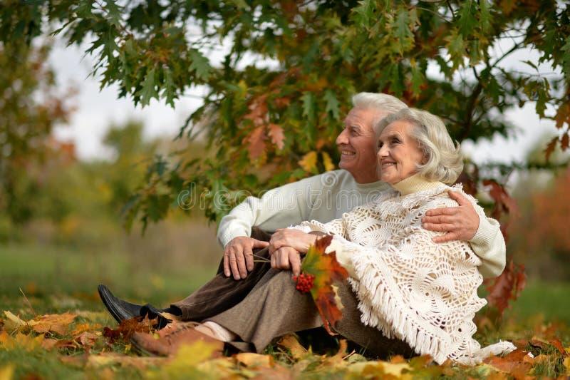 Portrait of happy mature couple posing outdoors in autumn park. Happy mature couple posing outdoors in autumn park stock images