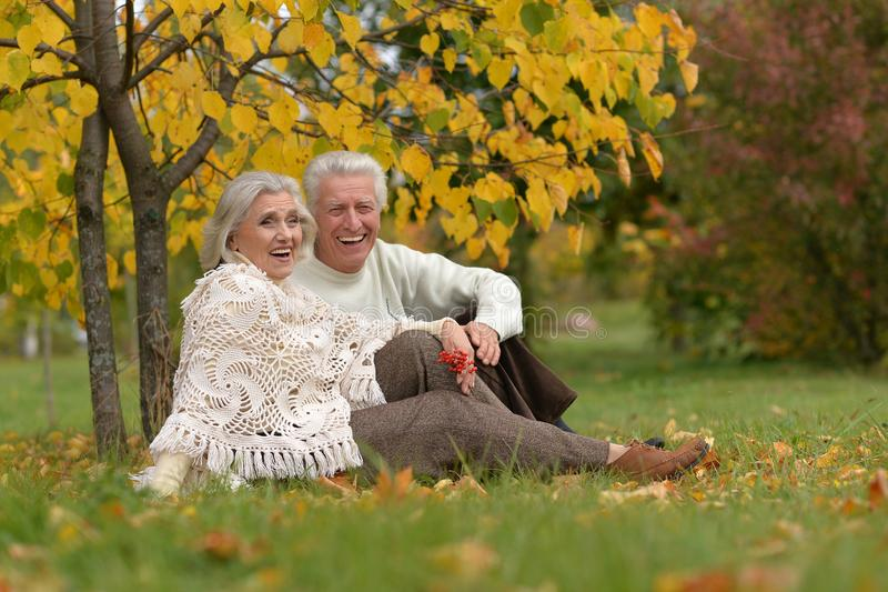Portrait of happy mature couple posing outdoors in autumn park. Happy mature couple posing outdoors in autumn park stock image