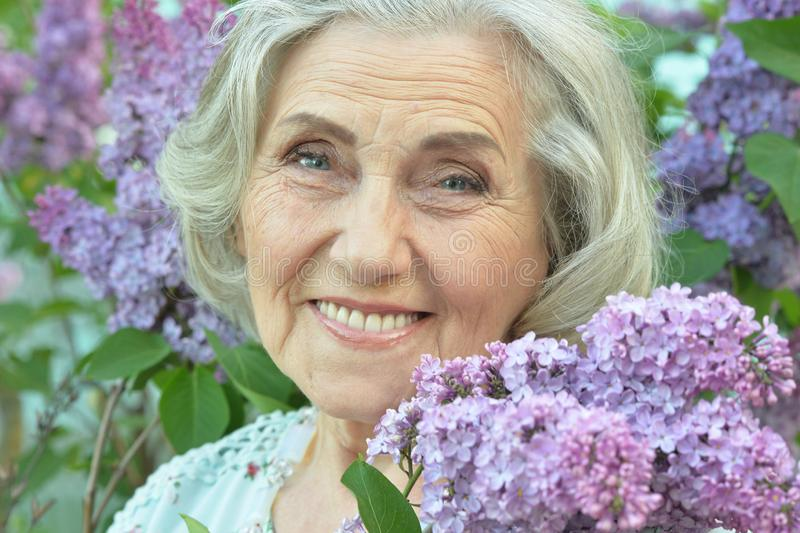 Portrait of happy senior beautiful woman with lilacs in spring park. Happy senior beautiful woman with lilacs in spring park stock photography