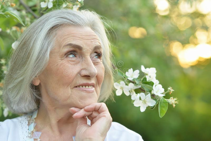Portrait of happy senior beautiful woman in spring park. Happy senior beautiful woman in spring park with blooming apple tree background royalty free stock photography