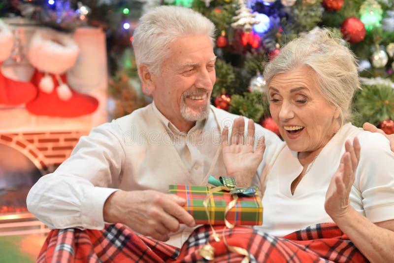 Portrait of happy senior couple celebrating Christmas stock images