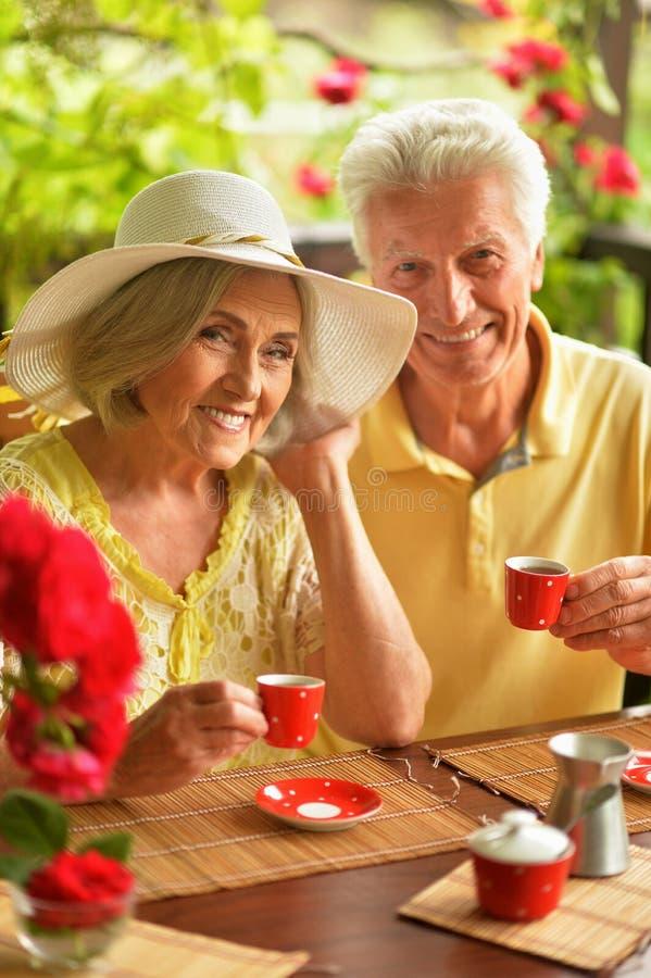 Portrait of happy senior couple drinking coffee royalty free stock image