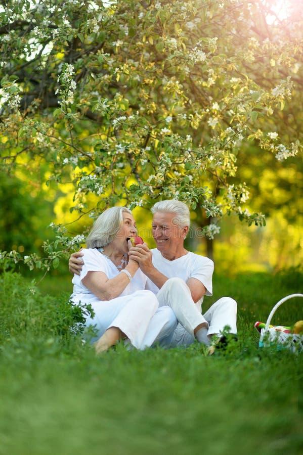 Portrait of happy senior couple having picnic stock photo