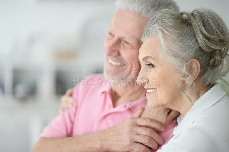Portrait of a happy senior couple at home royalty free stock photos