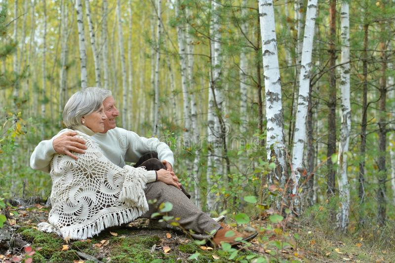 Portrait of happy senior couple sitting on lawn in autumn birch forest stock photo