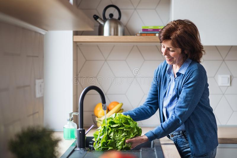 A portrait of senior woman indoors at home, washing lettuce. royalty free stock photo