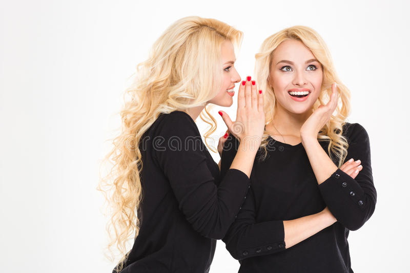 Portrait of a happy sisters twins gossiping. Isolated on a white background royalty free stock photos