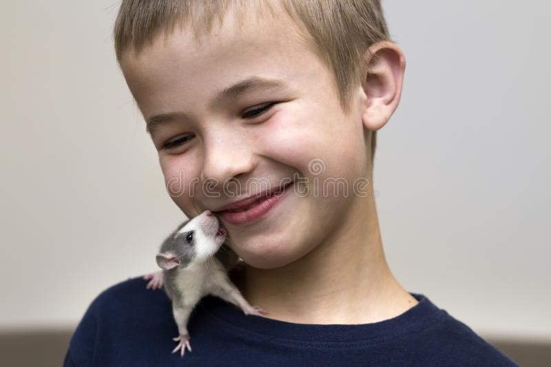 Portrait of happy smiling funny cute handsome child boy with white pet mouse hamster on shoulder on light copy space background. royalty free stock image
