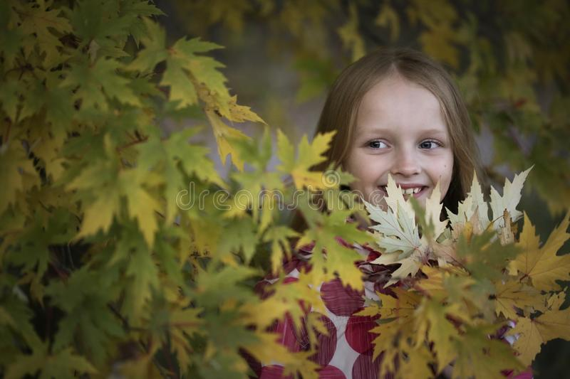 Portrait of a Happy smiling little girl in the autumn park. Cute four years old child enjoying nature outdoors. stock images