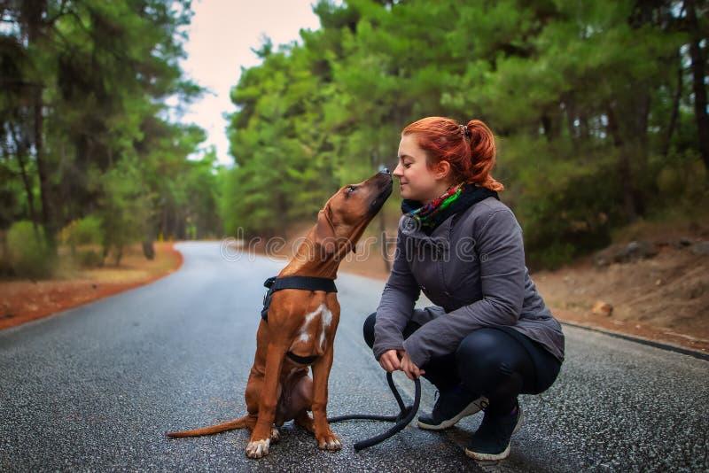 Portrait of happy teenage girl and Rhodesian ridgeback dog . Dog giving girl sweet kiss lick. stock photos