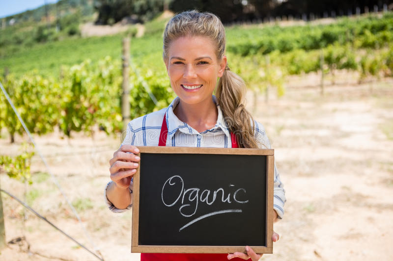 Portrait of happy woman holding slate with text in vineyard royalty free stock photography