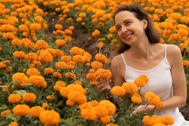Portrait of happy woman smiling in marigold flower and enjoying the fragrance. Marigold valley in Bali. Happy lifestyle. Romantic concept stock image