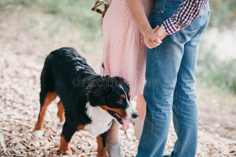 Portrait of happy young couple in stylish clothes feeding dog outside. autumn forest royalty free stock images