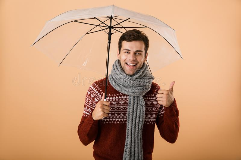 Portrait a happy young man dressed in sweater royalty free stock photography