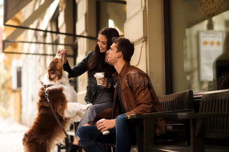 Portrait of happy young man and woman have walk outdoor with their pet, feed it with something delicious, sit on chairs royalty free stock photography