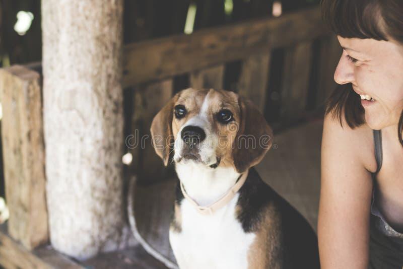 Portrait haut étroit de jeune femme avec son chien mignon de briquet dans le belvédère images libres de droits