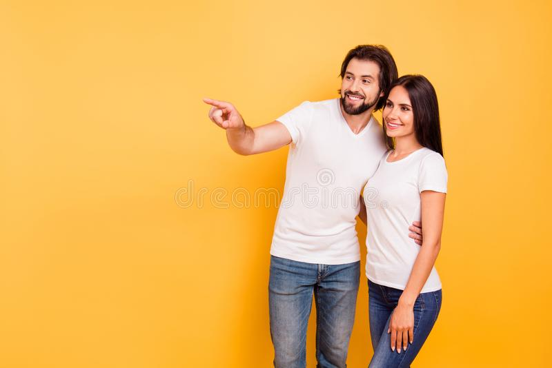 Portrait of her she his he nice charming attractive lovely cheerful people married spouses pointing far away day dream. Daydream isolated over shine vivid stock image