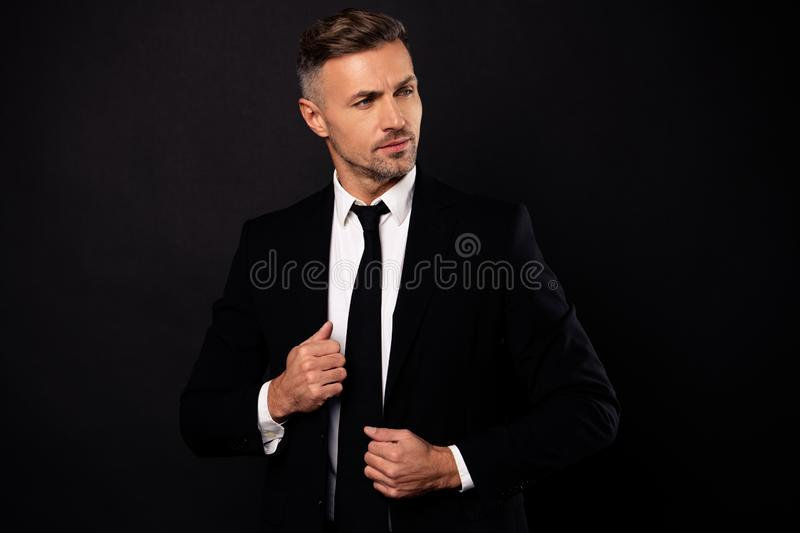 Portrait of his he nice-looking attractive chic gorgeous content guy finance director economist attorney lawyer shark. Expert specialist banker posing isolated stock photography