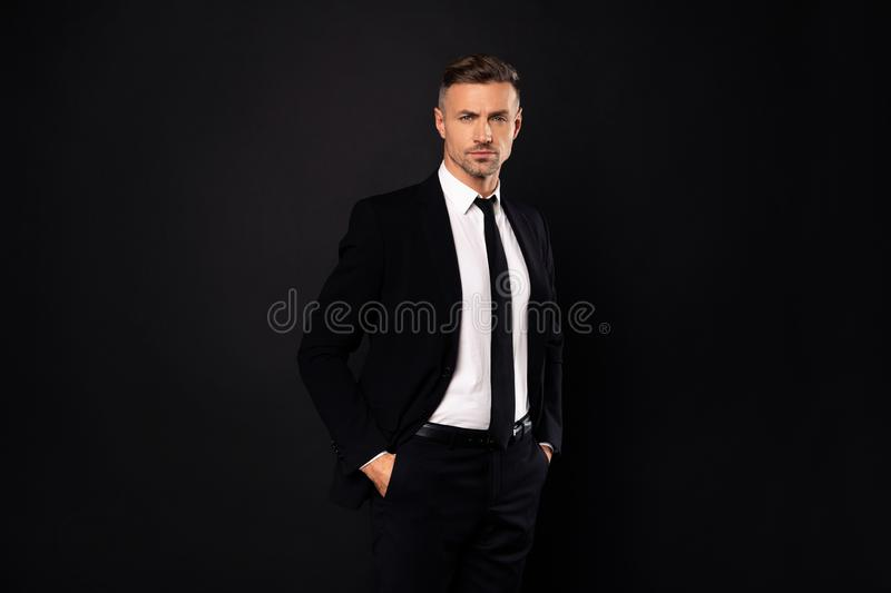 Portrait of his he nice-looking attractive chic gorgeous content guy financier executive director economist auditor. Attorney lawyer ceo boss chief isolated royalty free stock photo