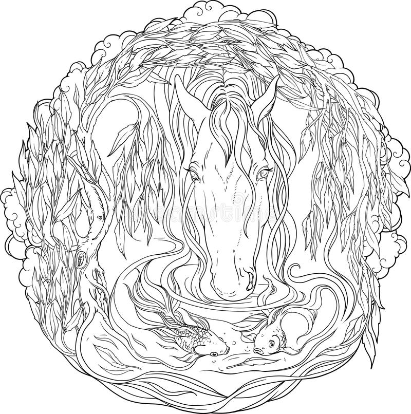 Koi fish in a pond coloring page - Print. Color. Fun! | 806x800